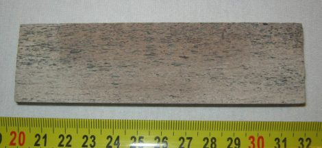 Mammoth bone cut into slice (120 mm x 34 mm x 11,5 mm)